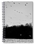 Snow Geese Winter Home In Delaware Spiral Notebook