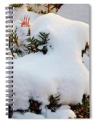 Snow Goat Spiral Notebook