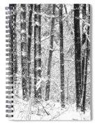 Snow In A Forest Spiral Notebook