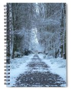 Snow In The Avenue Spiral Notebook