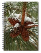 Snow In The Pine Spiral Notebook
