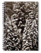 Snow-laden Forest Spiral Notebook