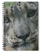 Snow Leopard 10 Spiral Notebook