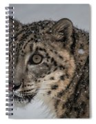 Snow Leopard 2 Spiral Notebook