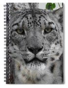 Snow Leopard 5 Posterized Spiral Notebook