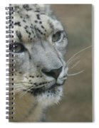 Snow Leopard 8 Spiral Notebook