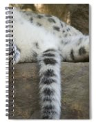 Snow Leopard Nap Spiral Notebook