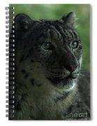 Snow Leopard Spiral Notebook