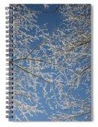 Snow Lined Limbs Spiral Notebook