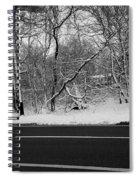 Snow On Fallen Tree Spiral Notebook