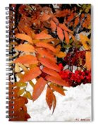 Snow On Scarlet Magick Spiral Notebook