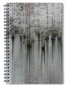 Snow On The Cypresses Spiral Notebook