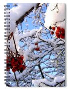Snow On The Mountain Ash Spiral Notebook