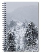 Snow On The Ridge In The Pike National Forest Spiral Notebook