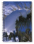 Snow Ornament - Joshua Tree Spiral Notebook