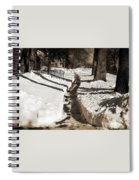 Snow Paths And Winter Shadows Spiral Notebook
