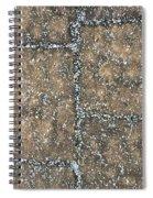Snow Pellets Spiral Notebook