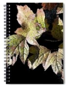 Snow Puff Leaves Spiral Notebook