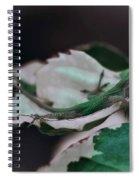 Snow Queen Hammock Spiral Notebook