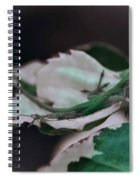 Snow Queen Hammock Spiral Notebook