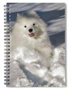 Snow Queen Spiral Notebook