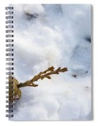 Snow Sprouts Spiral Notebook