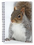 Snow Squirrel Spiral Notebook