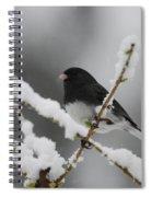 Snow Watcher Spiral Notebook