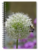 Snowball And The Bumblebee Spiral Notebook