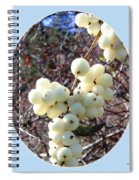 Snowberry Cluster Spiral Notebook