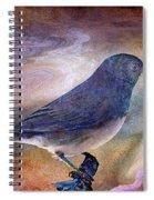 Snowbird Stories... Spiral Notebook