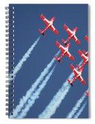Snowbirds In Flight Spiral Notebook