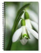 Snowdrops  Spiral Notebook