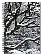 Snowfall And Tree Spiral Notebook