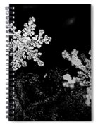 Snowflake Beauty Spiral Notebook
