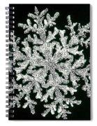 snowflake I Spiral Notebook