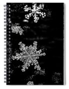 Snowflake Jewels Spiral Notebook