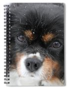 Gentle Snow Spiral Notebook