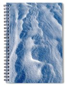 Snowforms 1 Spiral Notebook