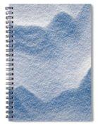 Snowforms 3 Spiral Notebook