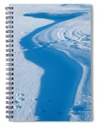 Snowforms 4 Spiral Notebook