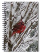 Snowing Spiral Notebook