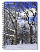 Snowman In Central Park Nyc Spiral Notebook