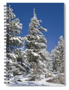 Snowscape 2 Spiral Notebook