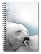 Snowstorm Kiss Spiral Notebook
