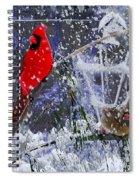 Snowstrom Spiral Notebook