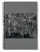 Snowy Abstract Spiral Notebook