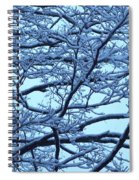 Snowy Branches Landscape Photograph Spiral Notebook