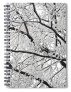 Snowy Branches Spiral Notebook