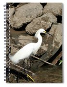 Snowy Egret Fishing Spiral Notebook